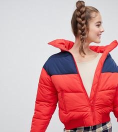 Красная дутая короткая куртка Monki - Синий
