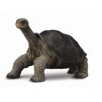 Фигурка Абингдонская слоновая черепаха 7 см Collecta