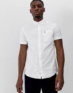 Белая приталенная оксфордская рубашка с короткими рукавами Jack Wills - Stableton - Белый