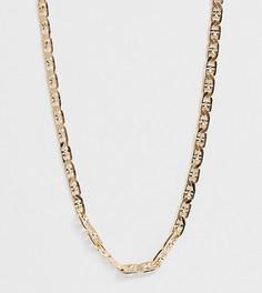 Ожерелье-цепочка Reclaimed Vintage inspired эксклюзивно для ASOS - Золотой