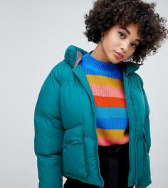 8c40afc2e7b Женская одежда стеганые – купить одежду в интернет-магазине