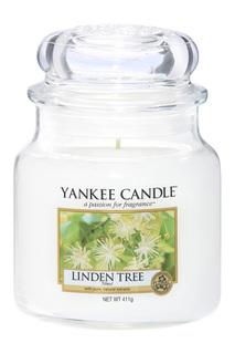 Свеча средняя Липа YANKEE CANDLE