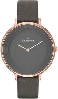 Женские часы в коллекции Ditte Женские часы Skagen SKW2216