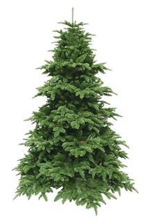 Искусственные елки Triumph Tree Ель Нормандия 215 см темно-зеленая 73407