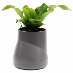 Кашпо Qualy Горшок цветочный Hill Pot, большой, серый