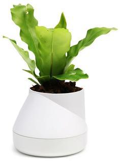 Кашпо Qualy Горшок цветочный Hill Pot, маленький, белый