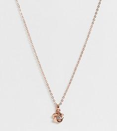 Ожерелье цвета розового золота с подвеской Ted Baker - Золотой