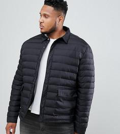 Стеганая куртка French Connection PLUS - Черный