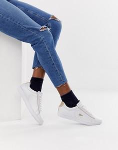 Кожаные кроссовки с золотистой отделкой Lacoste Carnaby Evo 118 - Белый