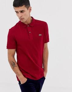 Бордовое приталенное поло с логотипом Lacoste - Красный