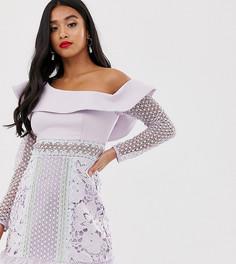 Сиреневое платье мини на одно плечо с пышным рукавом и контрастными кружевными вставками True Decadence Petite - Фиолетовый