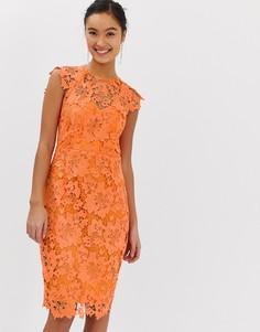 Оранжевое кружевное платье миди с фигурными краями Paper Dolls - Оранжевый