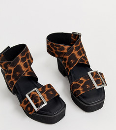 Босоножки с леопардовым принтом для широкой стопы на массивном каблуке ASOS DESIGN - Мульти