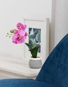Горшок для цветов из цемента с искусственной орхидеей Candlelight - Фиолетовый