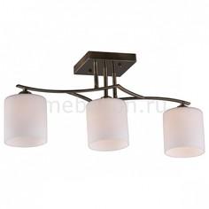 Светильник на штанге Pisticci OML-55317-03 Omnilux