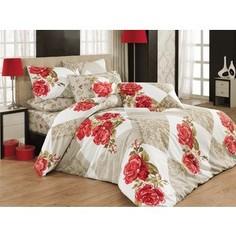 Комплект постельного белья Cotton Life 1,5 сп Amore (8026)
