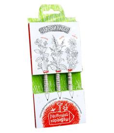 Растение Растущий карандаш Чайный набор чернографитные 3шт RK-01-03-09