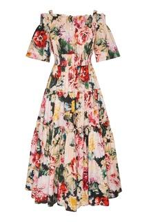 Хлопковое платье с пионами Dolce&Gabbana