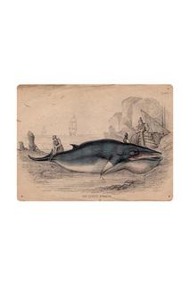 Старинная гравюра с китом Декоративная жесть