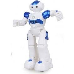 Samewin Радиоуправляемый робот Pilotage R2(917)
