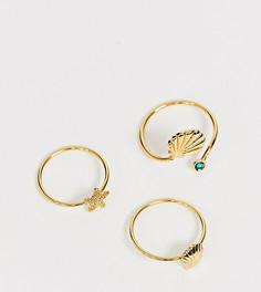 Набор из 3 колец с элементами в виде ракушек Reclaimed Vintage inspired - Золотой