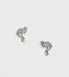 Серебряные серьги-гвоздики в виде фламинго Kingsley Ryan - Серебряный