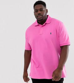 Поло из ткани пике ярко-розового цвета с логотипом Polo Ralph Lauren Big & Tall - Розовый