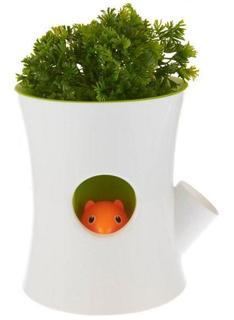 Настольные кашпо Qualy Горшок самополивающийся Log&Squirrel белый-зеленый