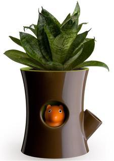 Настольные кашпо Qualy Горшок самополивающийся Log&Squirrel коричневый-зеленый