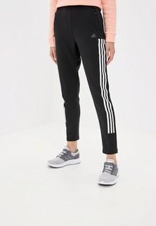 Брюки спортивные adidas CLIMAWARM PANT