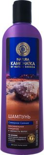 Средства по уходу за волосами Шампунь Natura Kamchatka Северное сияние 280 мл