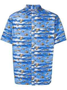 Lanvin рубашка с принтом акул