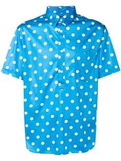 Comme Des Garçons Homme Plus рубашка-поло в горох