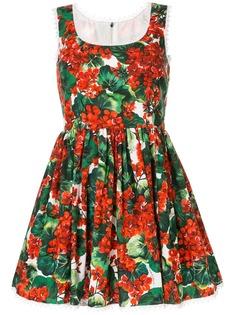 Dolce & Gabbana поплиновое платье с принтом Portofino