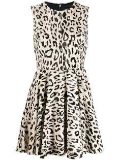Dolce & Gabbana платье мини с леопардовым принтом