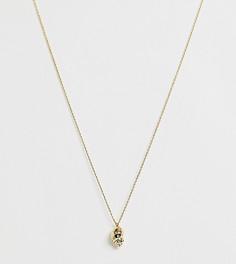 Золотистое ожерелье с подвеской-ракушкой Kate Spade Under The Sea - Золотой
