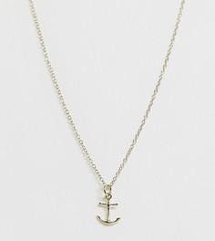 Ожерелье из позолоченного серебра с подвеской-якорем Kingsley Ryan - Золотой