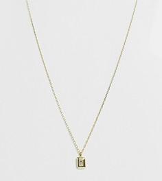 Серебряное ожерелье с позолотой 18 карат и подвеской Shashi - Золотой