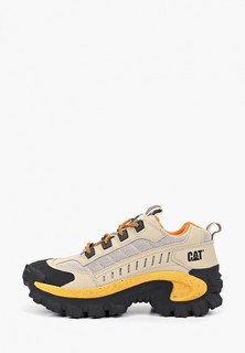 Ботинки трекинговые Caterpillar INTRUDER