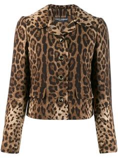 Dolce & Gabbana жакет с леопардовым принтом