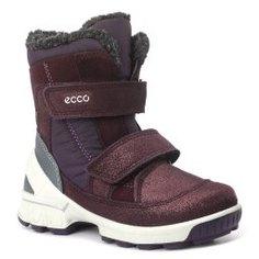 Полусапожки ECCO 753581 фиолетовый