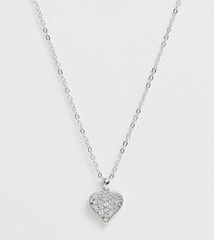 Серебристое ожерелье с подвеской-сердцем Ted Baker - Серебряный