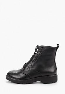 Ботинки Clarks Witcombe Flo