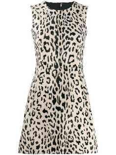 Dolce & Gabbana расклешенное платье мини с анималистичным принтом