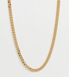 Серебряная позолоченная цепочка Chained & Able - Золотой