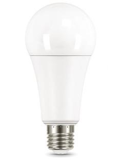 Лампочка Gauss Elementary E27 A67 30W 2320Lm 3000K 73219