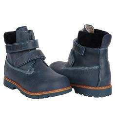 Ботинки M. Panda, цвет: синий