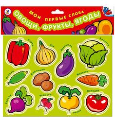 Набор магнитов Дрофа Овощи фрукты ягоды. Мои первые слова