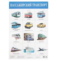 Плакат Дрофа Пассажирский транспорт