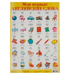 Плакат Дрофа Мои первые английские слова 1